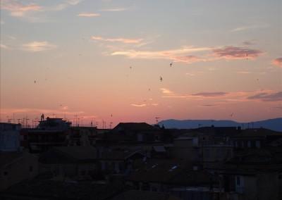 Corfu Masterclass reception  (7)